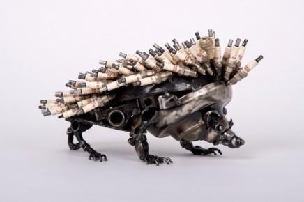 James Corbett, Hedgehog