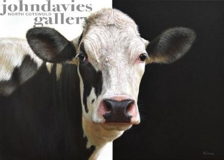 Alexandra Klimas, Susan the Cow II