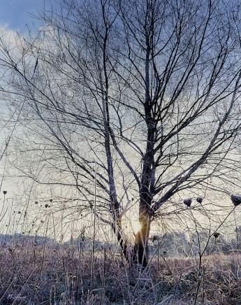 Mark S Payne, Little Hearts, Hinchingbrook Park