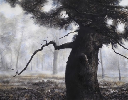 FOUR ARTISTS NEW TO THE GALLEY - including other gallery artists