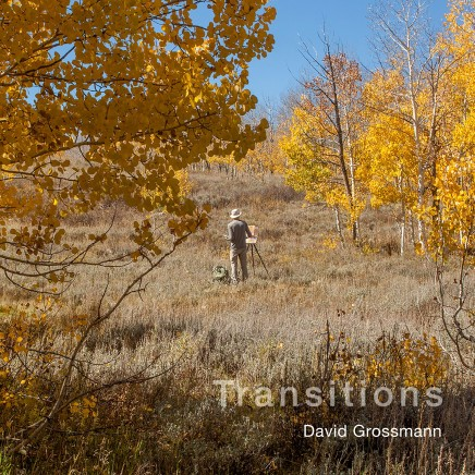 David Grossmann: Transitions