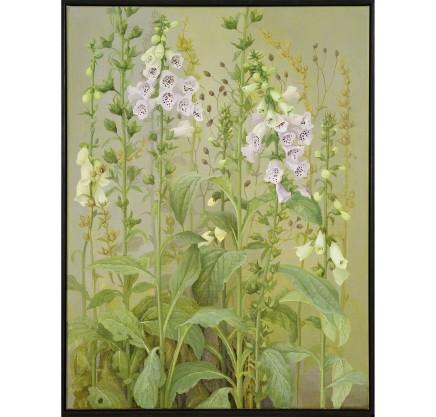 Jane Wormell: New works from my garden