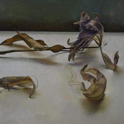 Susan Angharad Williams : New Paintings and Drawings