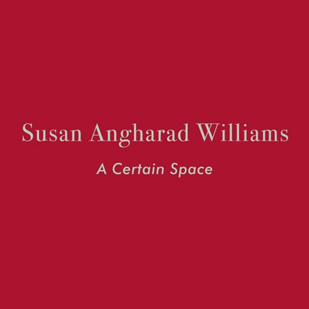 Susan Angharad Williams: A Certain Space