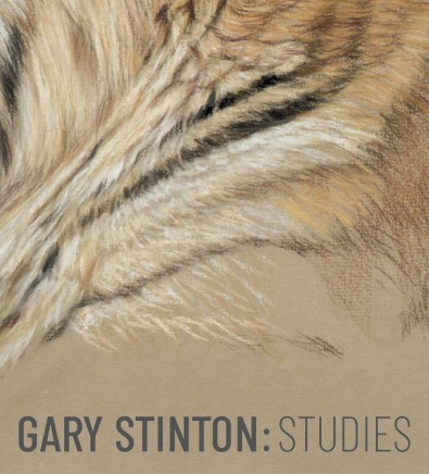 Gary Stinton: Studies