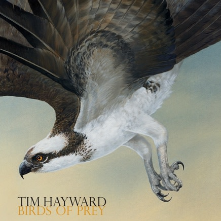 Tim Hayward : Birds of Prey