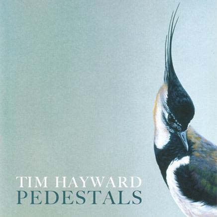Tim Hayward : Pedestals