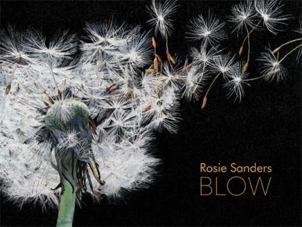 Rosie Sanders: Blow