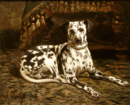 Antoni Clarys, Portrait of a dalmation