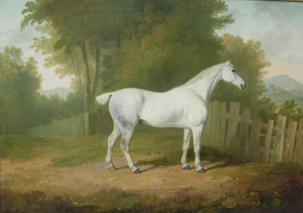 James Barenger, Race Horse (II of II)