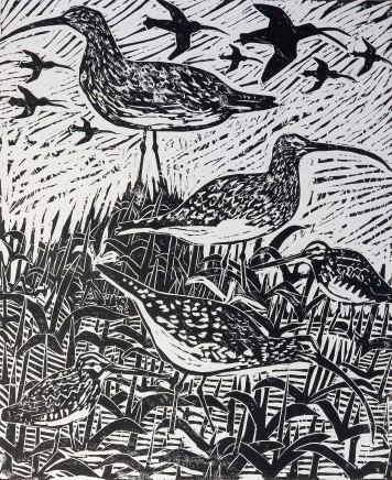 Paul Bloomer, Curlew and Snipe