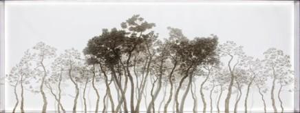 孫烽彩, 遷移, 2011
