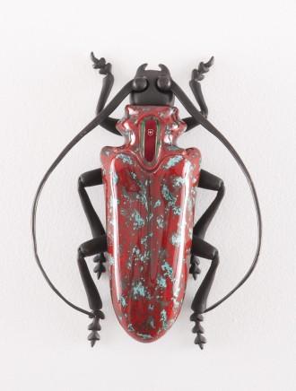 Matteo Pugliese, Cyclommatus elveticus ruber, 2012