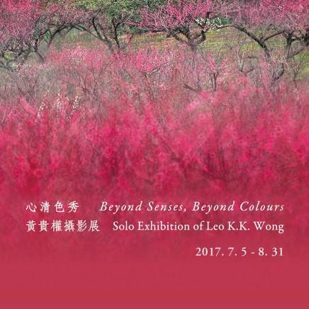 Beyond Senses, Beyond Colours • Leo K. K. Wong