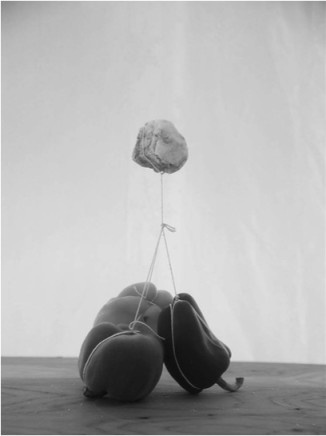 Alejandro Almanza Pereda Rock Peppers, 2015 Archival pigment print on cotton paper 80 x 60 x 3 cm Edition 1 of 5 plus 2 AP (AAP 002)