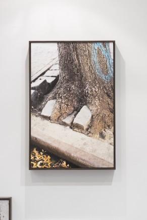 Polis (phusis), II, 2016 Glicee print 34.6 x 52 cm Edition of 3