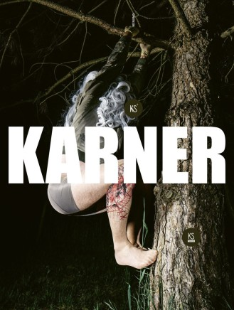 Karl Karner