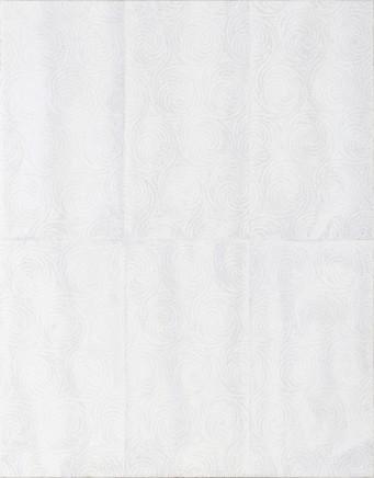 Jamisen Ogg Untitled (Paper Towel #10, Rincon, PR) , 2017
