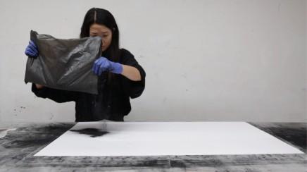 Carla Chan: Falling Black