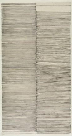 WANG Shilong 王世龙 No.218, 2015