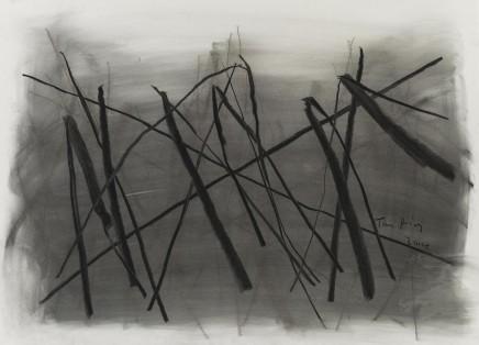 Drawing 素描, 2014