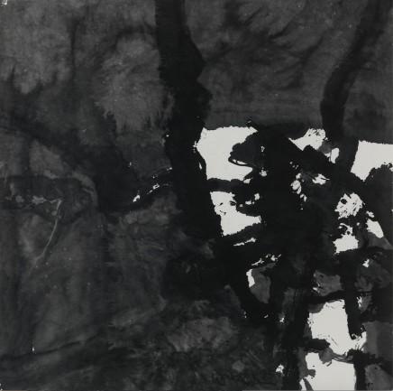 WANG Chuan 王川 Ink 水墨, 1995
