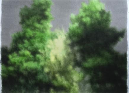 树 Trees, 2019