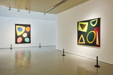 Like Singing and Dancing: John McLean's Abstract Painting 1969- , 2016, CAFA Art Museum