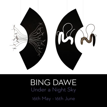 Show #23: Under a Night Sky by Bing Dawe