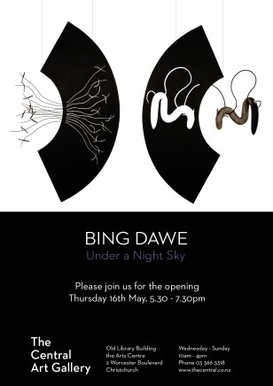 Exhibition Opening: Under a Night Sky by Bing Dawe