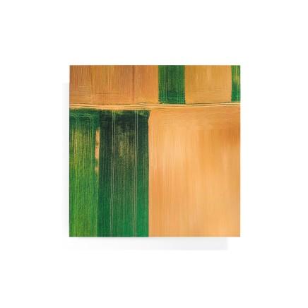 Elizabeth Thomson, Pink and Green Geometric II, 2020