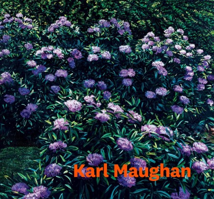 Karl Maughan (the book)