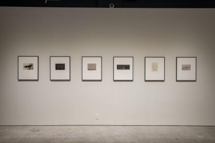 Yamamoto Masao Microcosms Macrocosms Installation Photos 15