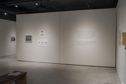Deanna Pizzitelli Koza Installation Photos 15