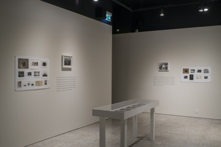 Deanna Pizzitelli Koza Installation Photos 18