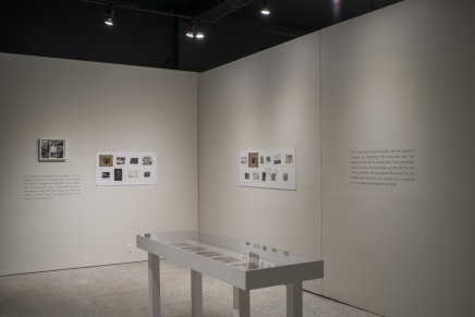 Deanna Pizzitelli Koza Installation Photos 19