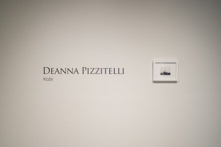 Deanna Pizzitelli Koza Installation Photos 2