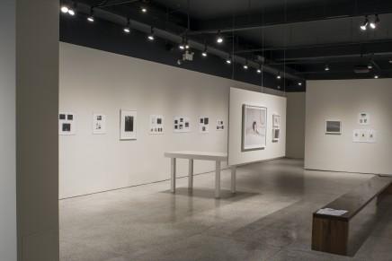 Deanna Pizzitelli Koza Installation Photos 45