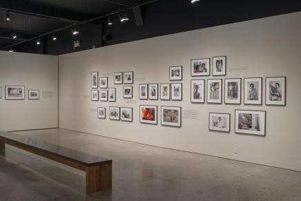 Sunil Gupta Friends And Lovers Installation Photos 4