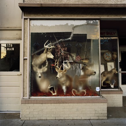 Phil Bergerson | Sublime Encounters
