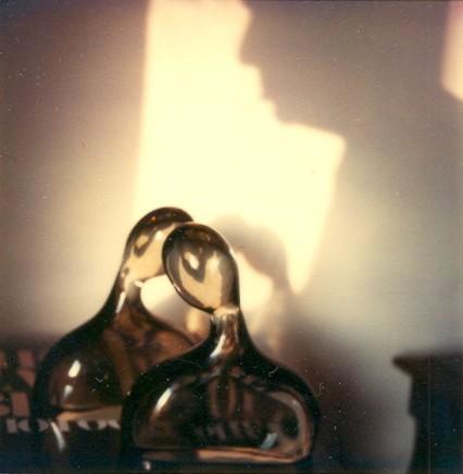 André Kertész   The Polaroids