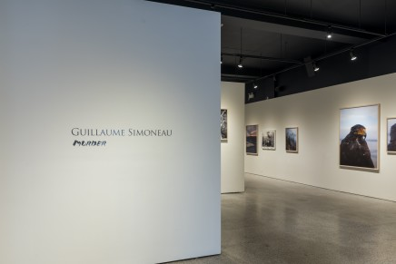 Guillaume Simoneau Murder Installation Photos 01