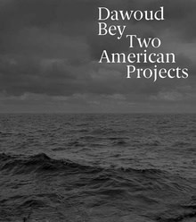 Dawoud Bey   Two American Projects