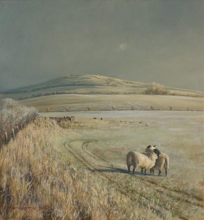 Bryan Hanlon - ACROSS THE CAMEL V