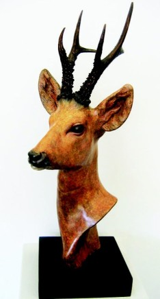 David Cemmick - DOE HEAD