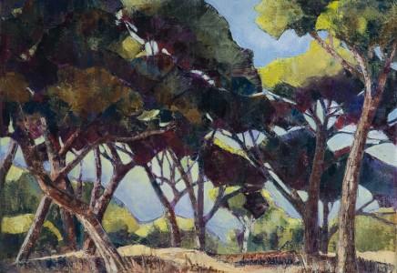 Frederike Stokhuyzen - THORN TREES