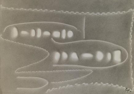 Corrado Cagli, Fishes, 1951