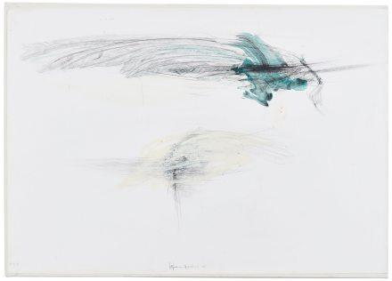 Lanfranco Quadrio, Bird wings, 2016