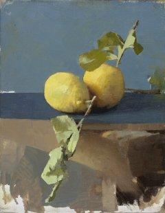Diarmuid Kelley, Untitled (Lemons), 2011