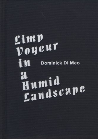 Dominick Di Meo: Limp Voyeur in a Humid Landscape